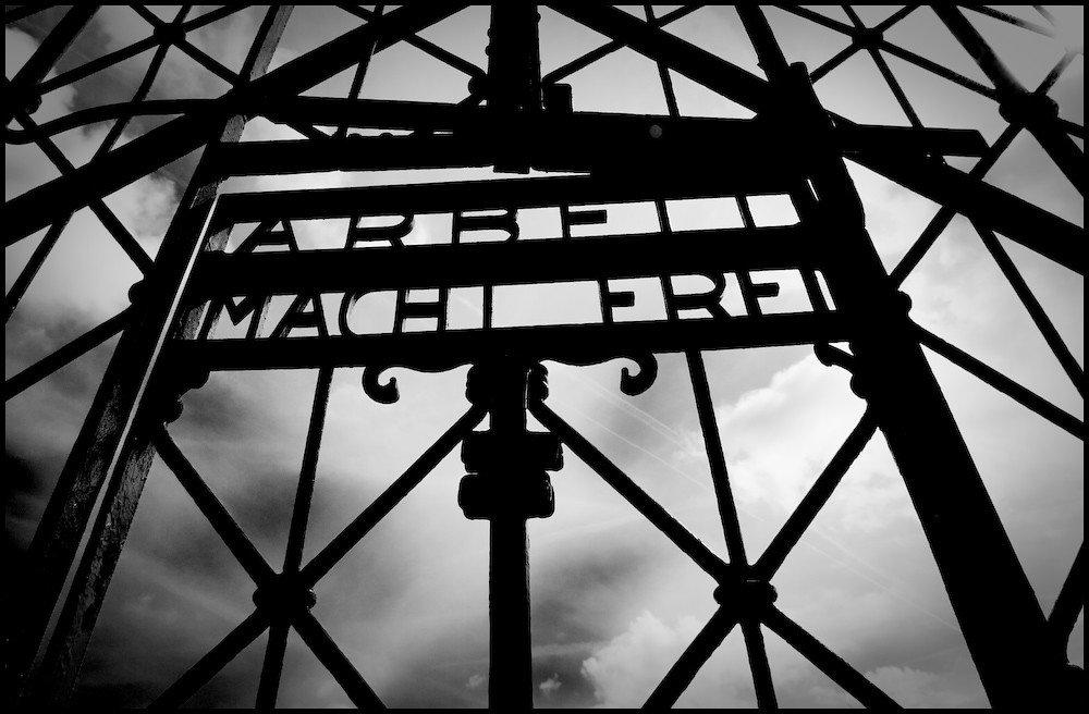Fiatalkorúként kerül bíróság elé a 96 éves nő, aki 11 430 rab megölésében vett részt egy náci munkatáborban – Liner.hu